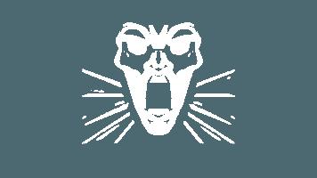 Apex Legends Wraith Passive Ability