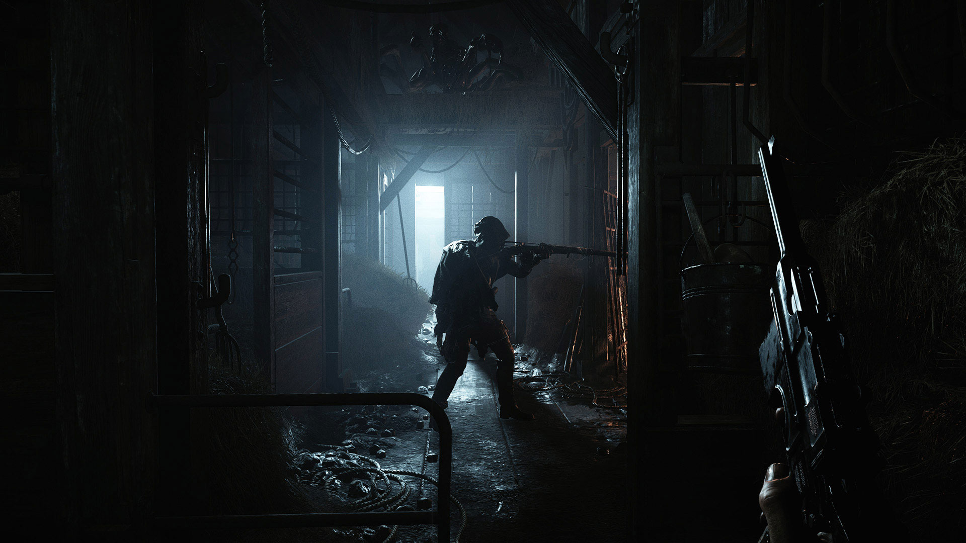 Hunt: Showdown Co-op