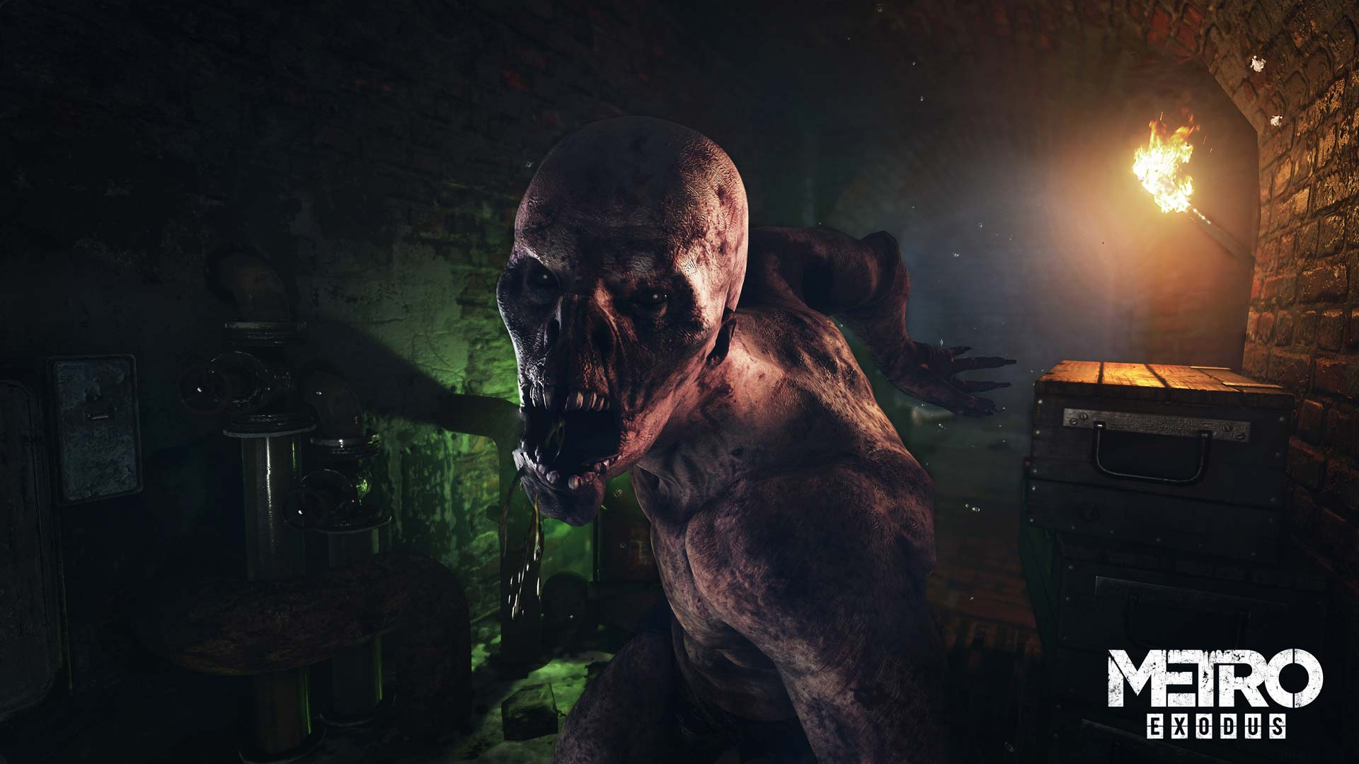 Metro: Exodus Monster