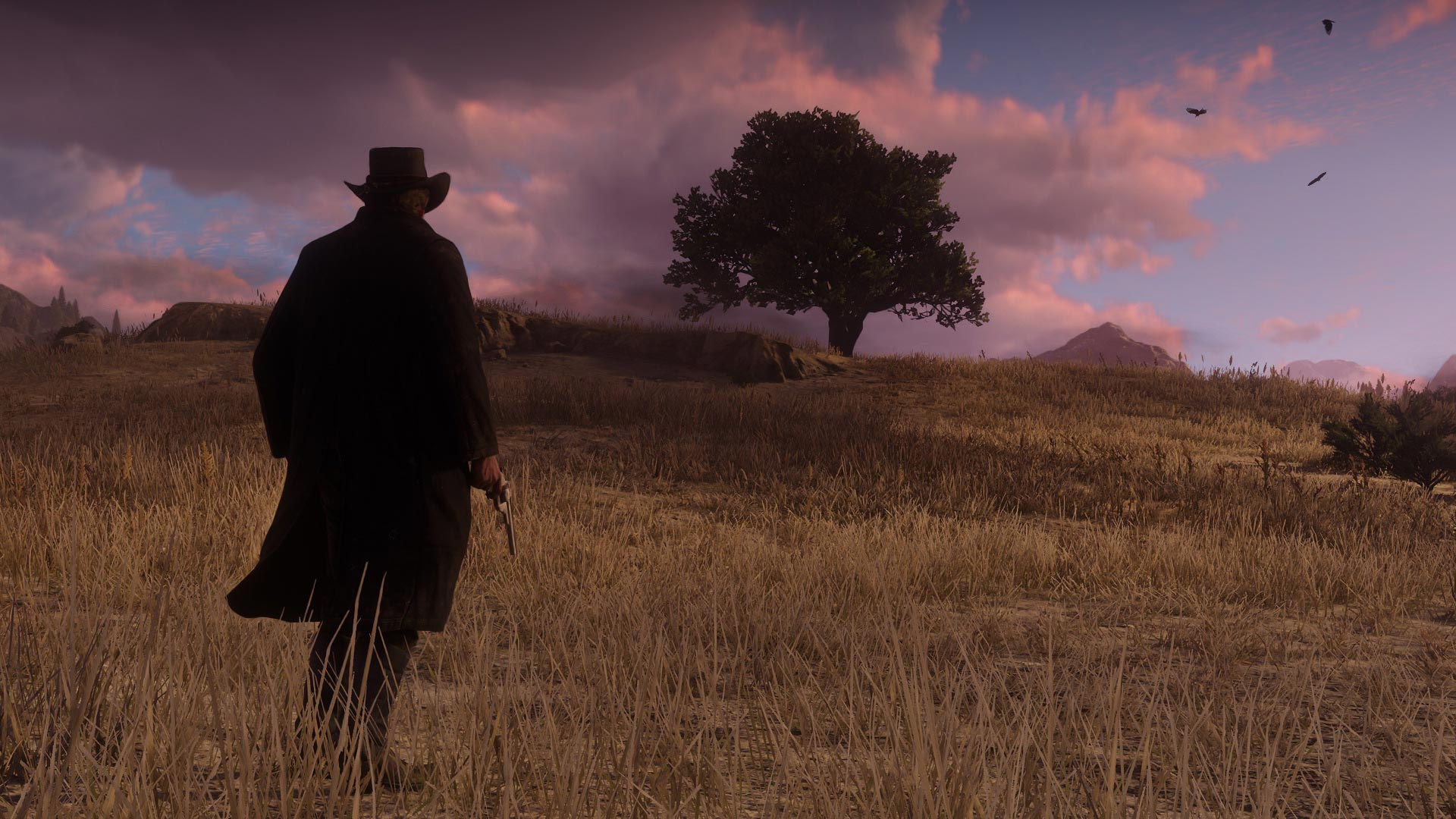 Red Dead Redemption 2 World