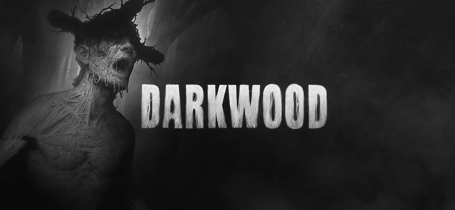 Darkwood Video