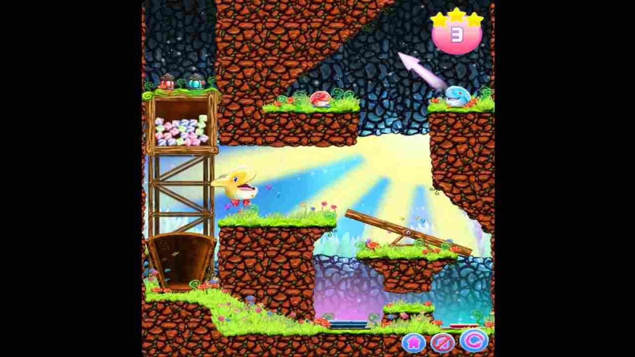 Fjong Background Image