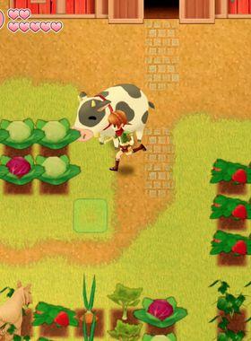 Harvest Moon: Light of Hope Key Art