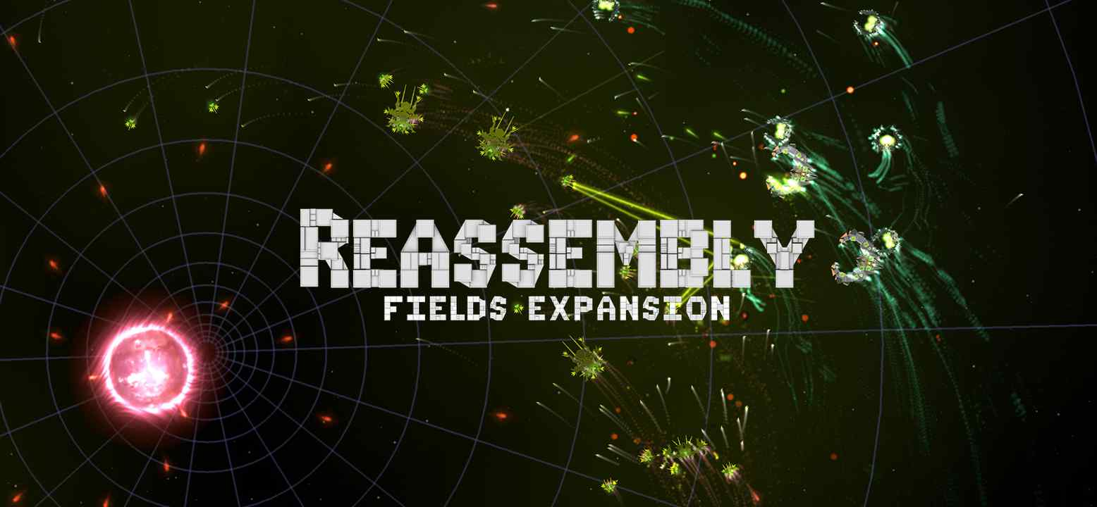 Reassembly Fields