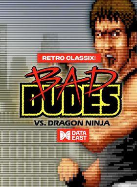Retro Classix: Bad Dudes Key Art