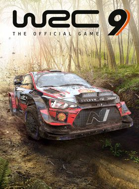 WRC 9 FIA World Rally Championship Key Art